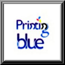 PrintingBlue Hires Professional Researcher for the Sake