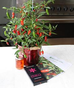 Chilli Plant Gift Set includes a heavy cropping windowsill chilli plant,  Sussex chilli jelly, a bar of organic chocolate, care gu