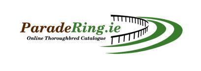 Paradering.ie Horse Sales Website