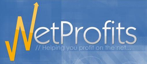 NetProfits Internet Consulting