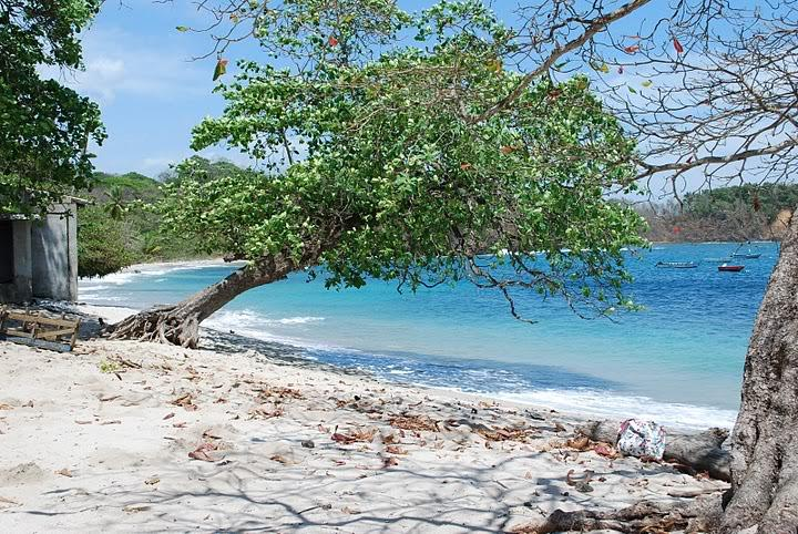 Costa Rica Real Estate Specialists Offer New Listings