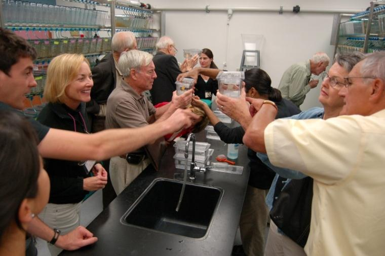 The Biology Bootcamp participants get an up-close look at the zebrafish enclosures with the help of several postdoctoral scholars