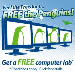 Free Computer Lab Promotion for Schools