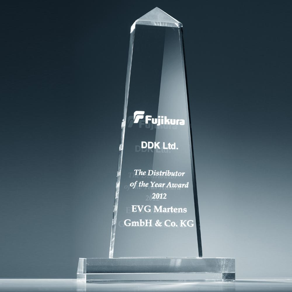 Award Best Distributor of the year 2012