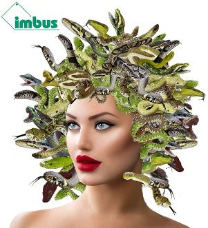 Symbolyses the problems on the way to successful test data management: the snake-haired Medusa