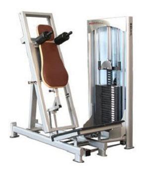 Weight Training Station