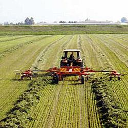Global and China Hay Windrower Market 2016: Industry Size,