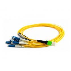 Pre-branch Cable