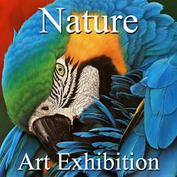 Nature 2016 Art Exhibition Results Now Online & Ready to View
