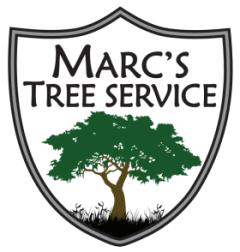 Marc`s Tree Service – The Best Tree Service Charlotte NC