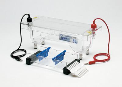 Global Electrophoresis Equipment Market 2016