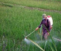 Crop Protection Chemical