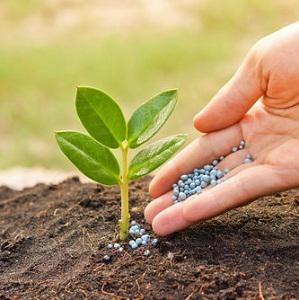 Global Nitrogenous Fertilizers Market 2016 - Yara