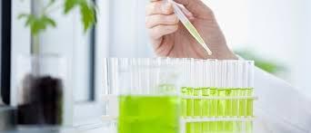Asia Pacific Bio Composites Market, 2014-2020 by Segmentation: