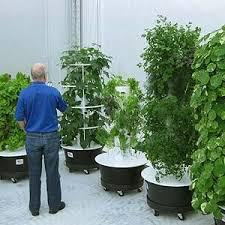 Global Vertical Farming, Plant Factory Market