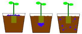 Controlled Release Fertilizers Market: Global Industry