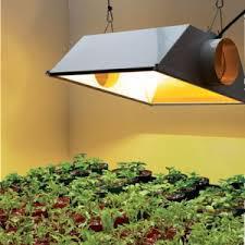 Global Indoor Grow Lights Market 2017 - Philips, OSRAM,