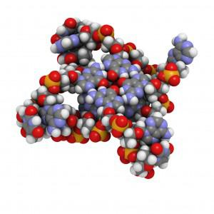 Global Protein Expression System Market