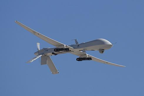 Biomimetic Aircraft
