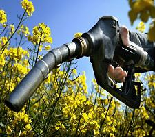 Global Biofuels Market 2017 - Poet, ADM, Valero Energy, Green