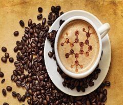 Global Caffeine Market 2017 - Siegfried, CSPC Pharma, KUDOS,