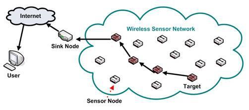 Wireless Sensor Networks (WSN)