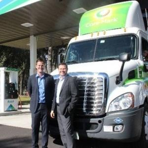 Global Compreed Natural Gas Vehicles Market