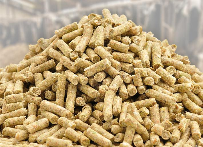 Global Animal Feed Additives Market 2017 - Evonik, Cargill
