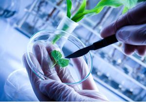 Biotechnology Instrumentation Market