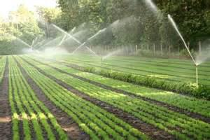 Micro and Mechanized Irrigation Systems Market