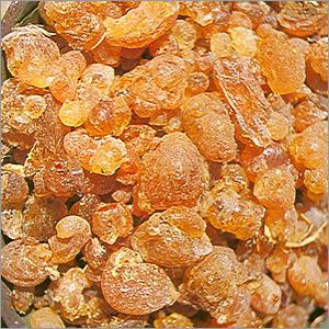 Global Cassia Gum Market 2017 - Agro Gums, Avlast Hydrocolloids,