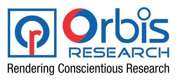 Global Ciprofloxacin HCl Market Professional Survey Market