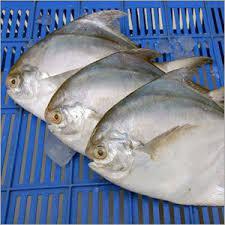 Global Seafood Extracts Market 2017 - MC Food Specialties Inc,
