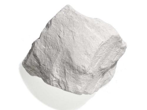 Global Diatomite Sales Market 2017 - Domolin, EP Minerals, Showa