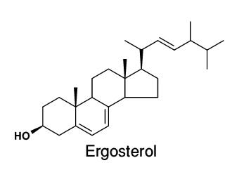 Global Ergosterol Market 2017 Top Key Players - AURUM Pharmatech