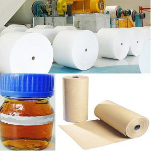 Global Enzyme for Pulp & Paper Market