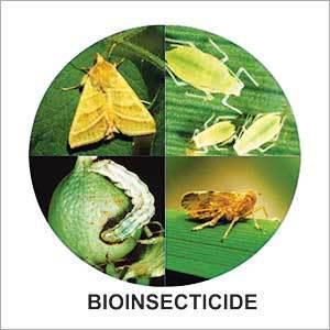 Global Bio Pesticides Market 2017 - The DOW Chemical, Monsanto,