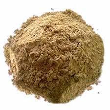 Global Psyllium Husk Powder Market
