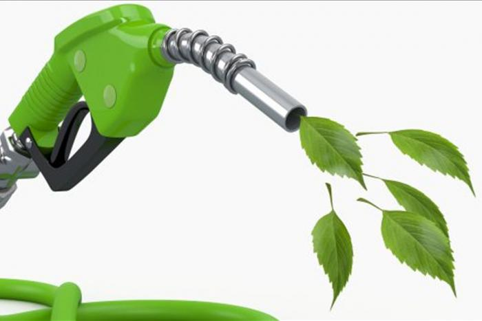 Biogas and Biomethane