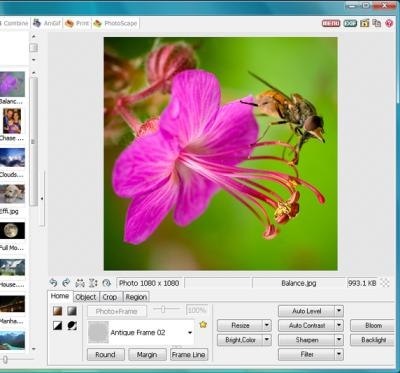 Global Image Editing Software Market Size and Forecast 2022 -