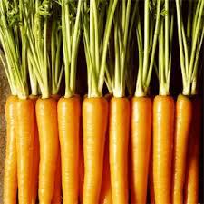 United States Carotenoids Market Trends and Forecast Report