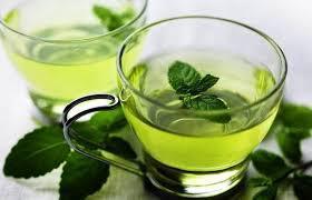 Global Green Tea Essential Oil Extract Market 2017 - GOYUM SCREW