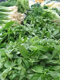 Herb & Spice Extracts Market: APEJ to Lead the Global Market