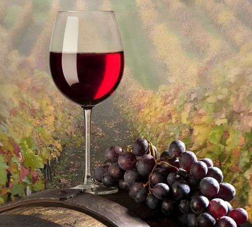 Global Wine-Making Yeast Market 2017 - Associated British Foods