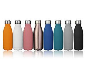 Global Stainless Steel Insulated Water Bottle Market 2017 -