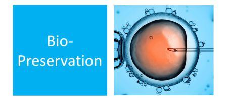 Biopreservation Market — Global Industry Insights, Trends,