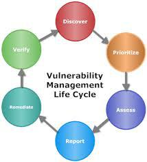 Security and Vulnerability Management Market: Global