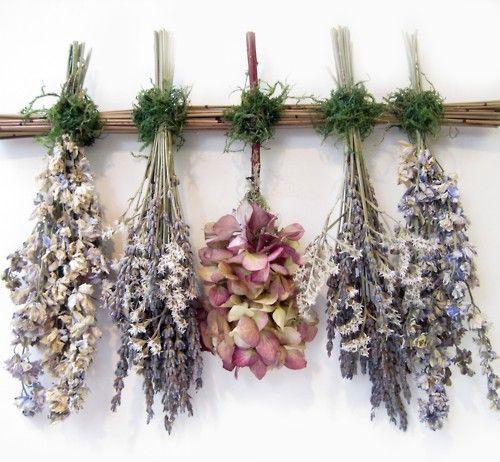 Dried Flowers Market