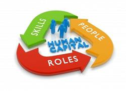 Human Capital Management Market Analysis