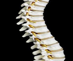 Spinal Intervention Market